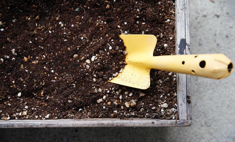 家庭菜園・ガーデニング
