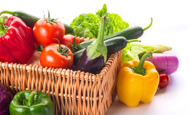 家庭菜園 栽培カレンダー